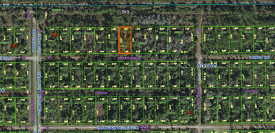 Indian Lake Estates, Pre-Foreclosure Vacant Lot, Drive By, Low Taxes, No Reserve