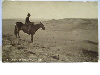 "1920s PHOTO POSTCARD  "" SUNRISE ON THE CATTLE RANGE "" COWBOY ON HORSE UNUSED"