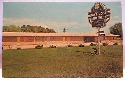 "1970 Adv Postcard  "" White Rose Motel ""  Gonzalez La W/ Sign , Bio Unused"