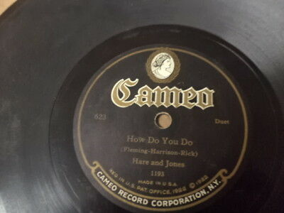 20s CAMEO 78/Hare and Jones/Duet w.Orch.