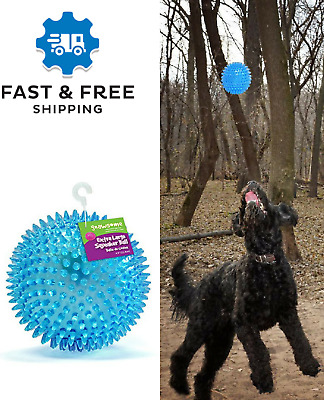 """Squeaker Squeeze Ball Dog Toy Gnawsome Large chatter ball, Extra Large Ball 4.5"""""""