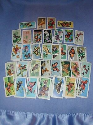 1963 Brooke Bond Tea Butterflies Of North America Trading Cards Lot Of 53