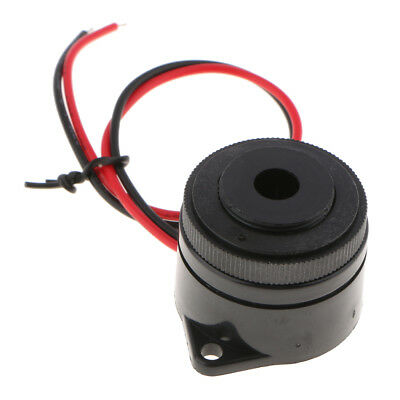 DC12V Electronic Piezo Active Buzzer Sounder with Leading Wire Spiral Hole