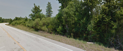 Residential Vacant Lot, Polk City, Foreclosure Ready, No Reserve, Road Frontage