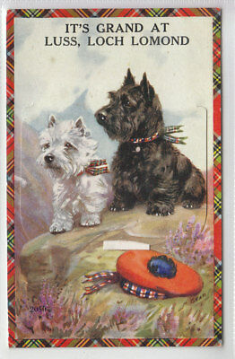 Scotch Scottish Terriers Luss Loch Lomond View Pull Out Valentines Mail Novelty