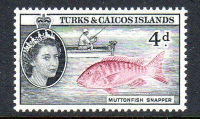 1957 TURKS & CAICOS ISLANDS 4d muttonfish snapper SG242 mint very light hinged