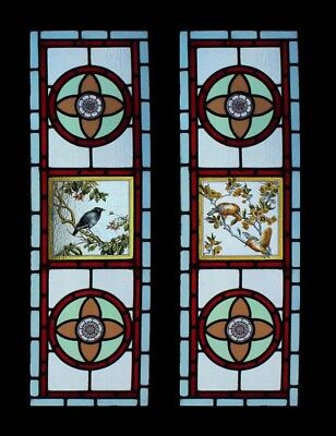 Stunning Pair Painted Birds Antique English Stained Glass Windows Sidelights