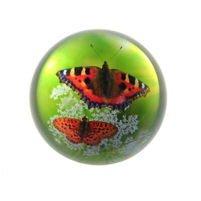 80MM Clear Crystal Half Ball Sphere Paperweight Butterfly Pattern Ornament Gifts