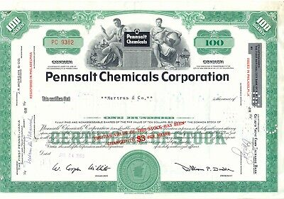 USA 1959 PENNSALT CHEMICALS CORPORATION, Philadelphia, attraktives Zertifikat