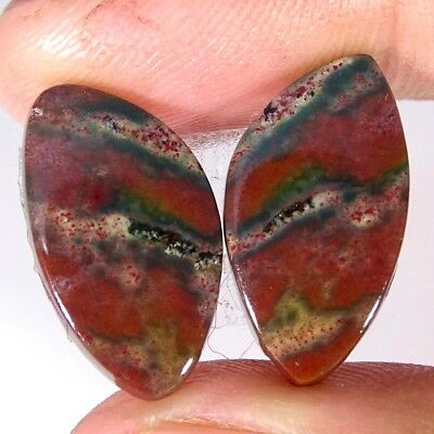 15.30Cts 100% Natural bloodstone Opal Fancy Pair Cabochon Loose Gemstone