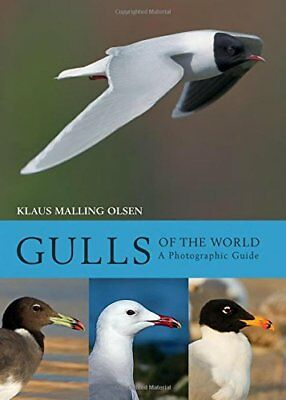 Gulls of the World: A Photographic Guide by Olsen, Klaus Malling