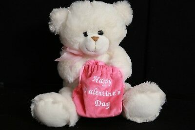 Happy Valentines's Day White Teddy Bear w/ Pink Bag Chrisha