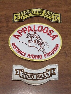 Vintage Competitive Horse Riding Patches Lot of 3 Appaloosa Riding Program