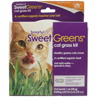 Sweetgreens Cat Grass Kit - SmartyKat