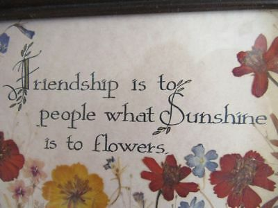 "Vintage Dried Flower Friendship Picture Signed "" Hott 1983"" Framed With Hanger"