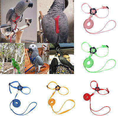 Parrot Bird Leash Adjustable Harness Pets Anti Flying Outdoor Training Rope