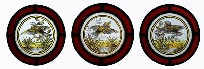Rare Set Of 3 Bird Roundels Stunning Painted Lakeland Kingfishers Stained Glass