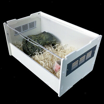 Reptile House Terrarium Tank Box For Gecko, Lizard, Turtle, Insects