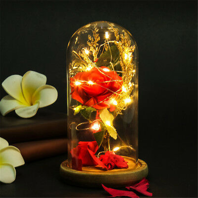Eternal Love Preserved Bionic Artificial Rose Flowers Glass Cover + LED Light