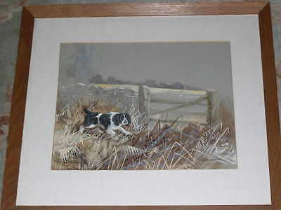 Large Antique English Springer Spaniel Dog Watercolour Painting Ward Binks 1931