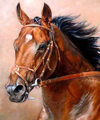 CHOP839 beautiful fancy strong horse animal hand  oil painting art on canvas