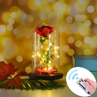 Romantic Beauty And The Beast Red Rose Glass Dome Led Llight Valentine's Gifts