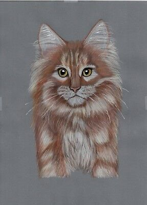 hand drawn Original artwork parchment craft picture Ginger Norwegian forest cat