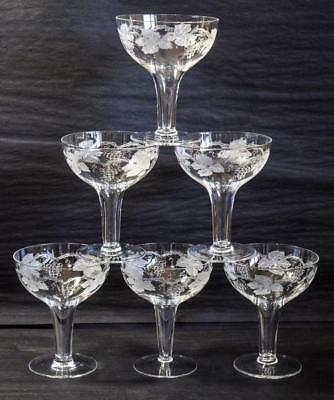 6 Hollow Stemmed Bohemia Crystal Champagne Glasses/Coupes Etched Grape Vine Stem
