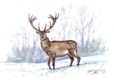 """Winter Stag -  Original 5""""x 7"""" watercolour painting."""