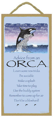 ADVICE FROM AN ORCA wood INSPIRATIONAL SIGN wall hang PLAQUE Animal Whale USA