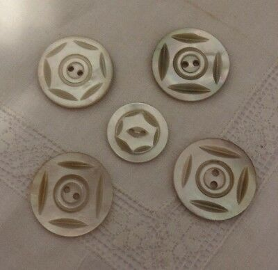 Vintage Mother Of Pearl Carved Shell MOP Buttons 104-13