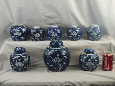Eight Antique Chinese Porcelain Blue And White Prunus Jars