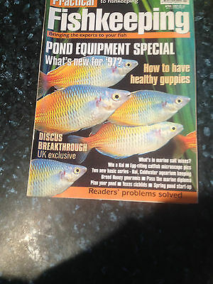 PRACTICAL FISHKEEPING -How to have healthy guppies-April 1997