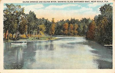 C13-3435, Silver Springs And Silver River, Glass Bottomed Boat, Ocala, Fl