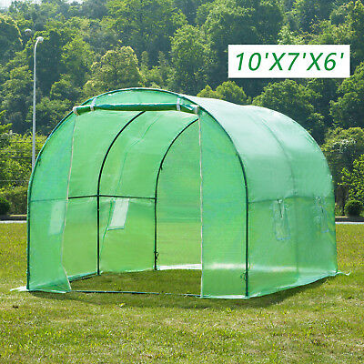 Walk-in Polytunne 10'x7'x6' Greenhouse Steeple Larger Green House Garden Plant