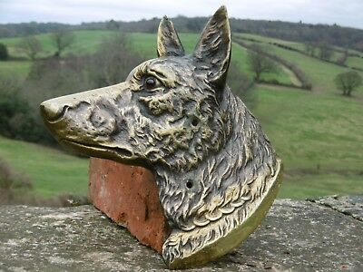SUPERB 19thc ARCHITECTURAL  BRONZE HEAD OF A DOG WITH ORIGINAL GLASS EYE