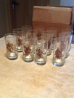 Vintage Set Of 12 Woody Crumbo Native American Indian Dancer Glasses Mint In Box