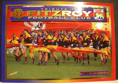 AFL Select 1996 Series 2 Case Card Fitzroy Football Club Tribute card