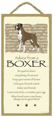 ADVICE FROM A BOXER dog puppy INSPIRATIONAL SIGN wood WALL hanging PLAQUE USA