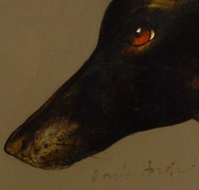 WHIPPET / GREYHOUND : ORIGINAL OIL PAINTING : Sighthound Dog Art David Andrews