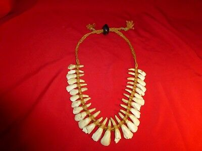 Rare Ca 1870 Native American Sioux Indian Warrior 27 Buffalo Tooth Necklace -Exc