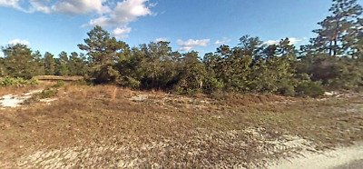 Vacant Lot, Foreclosure Ready, No Reserve, Buildable, Utilities, Road Frontage