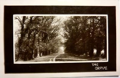 Vintage RPPC Postcard Bordulac ND Holcomb's Grove early 1900s population 29 !!!!