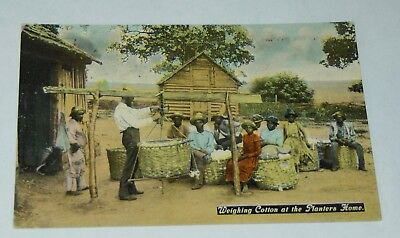 ANTIQUE BLACK AMERICANA Postcard WEIGHING COTTON AT THE PLANTER'S HOME