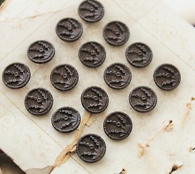 Antique Buttons - Rare Set Austrian Tinies - For Antique Clothing / Collecting