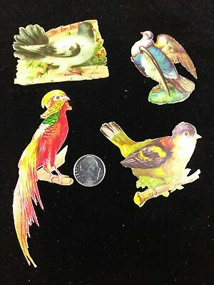 Vtg Victorian Die Cut Scrap-1880's-1890's Lot of 4 Birds Nice Cuts