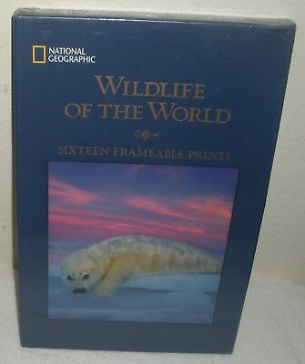 NATIONAL GEOGRAPHIC WILDLIFE OF THE WORLD 16 Frameable Animals Prints Pictures
