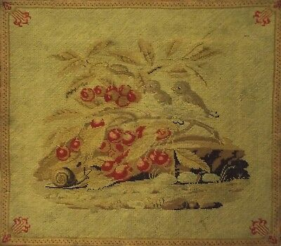 MID/LATE 19TH CENTURY NEEDLEPOINT OF BIRDS & A SNAIL AROUND RED BERRIES - c.1870