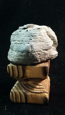 CARLOS CASTANEDA'S TOLTEC SHAMANIC POWER OBJECT - From The Ruins of Teotihuacan