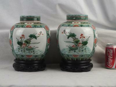 Good Mirror Pair 19Th C Chinese Famille Verte Water Lilies Jars Covers & Stands
